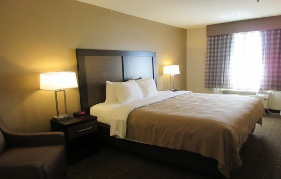 Quality Inn Tucson Airport: King Room